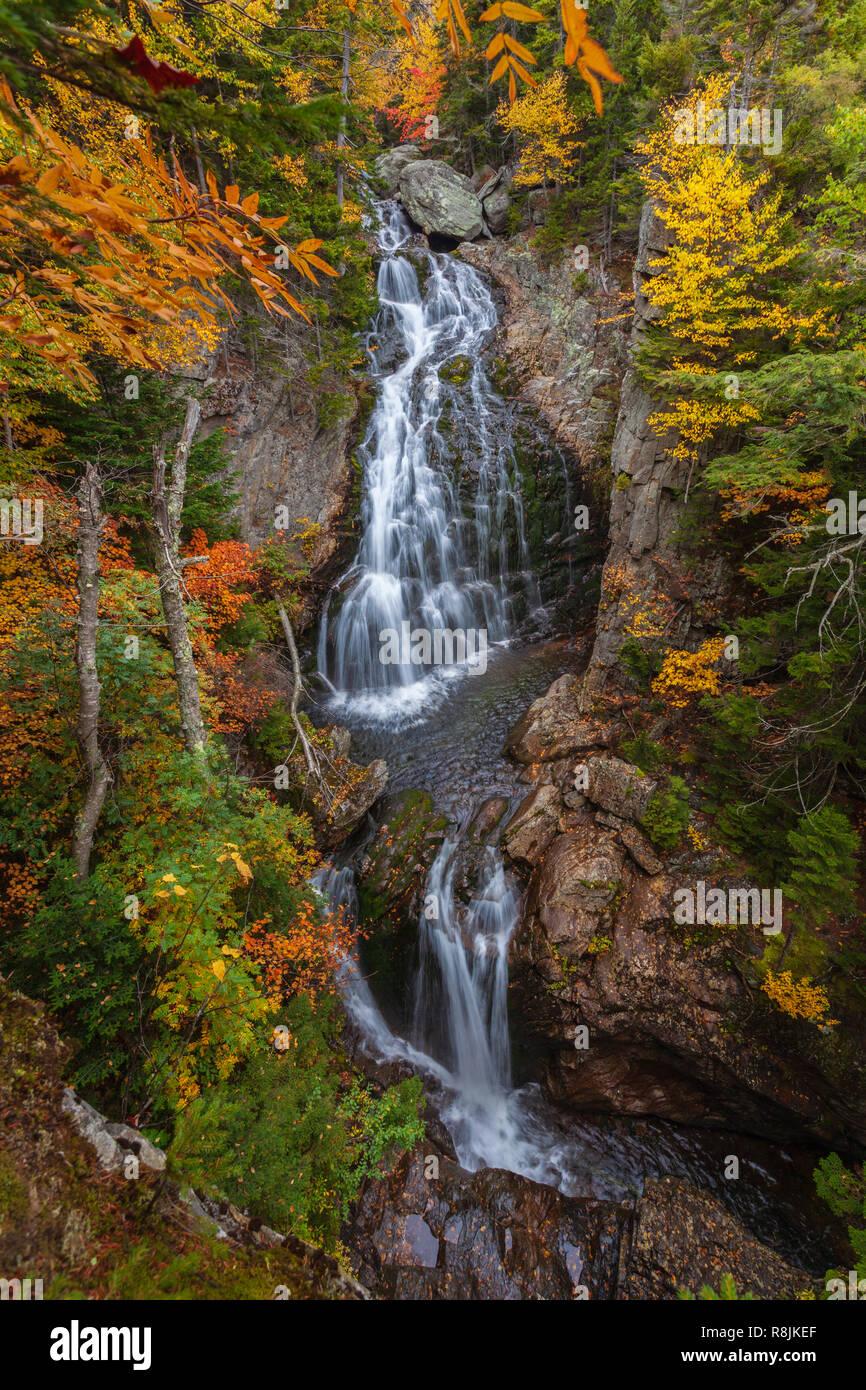 Cascata di cristallo è una bella cascata che si trova in Pinkham tacca, NH. Qui il fiume Ellis scende a circa un centinaio di metri circondato da foglie colorate. Foto Stock
