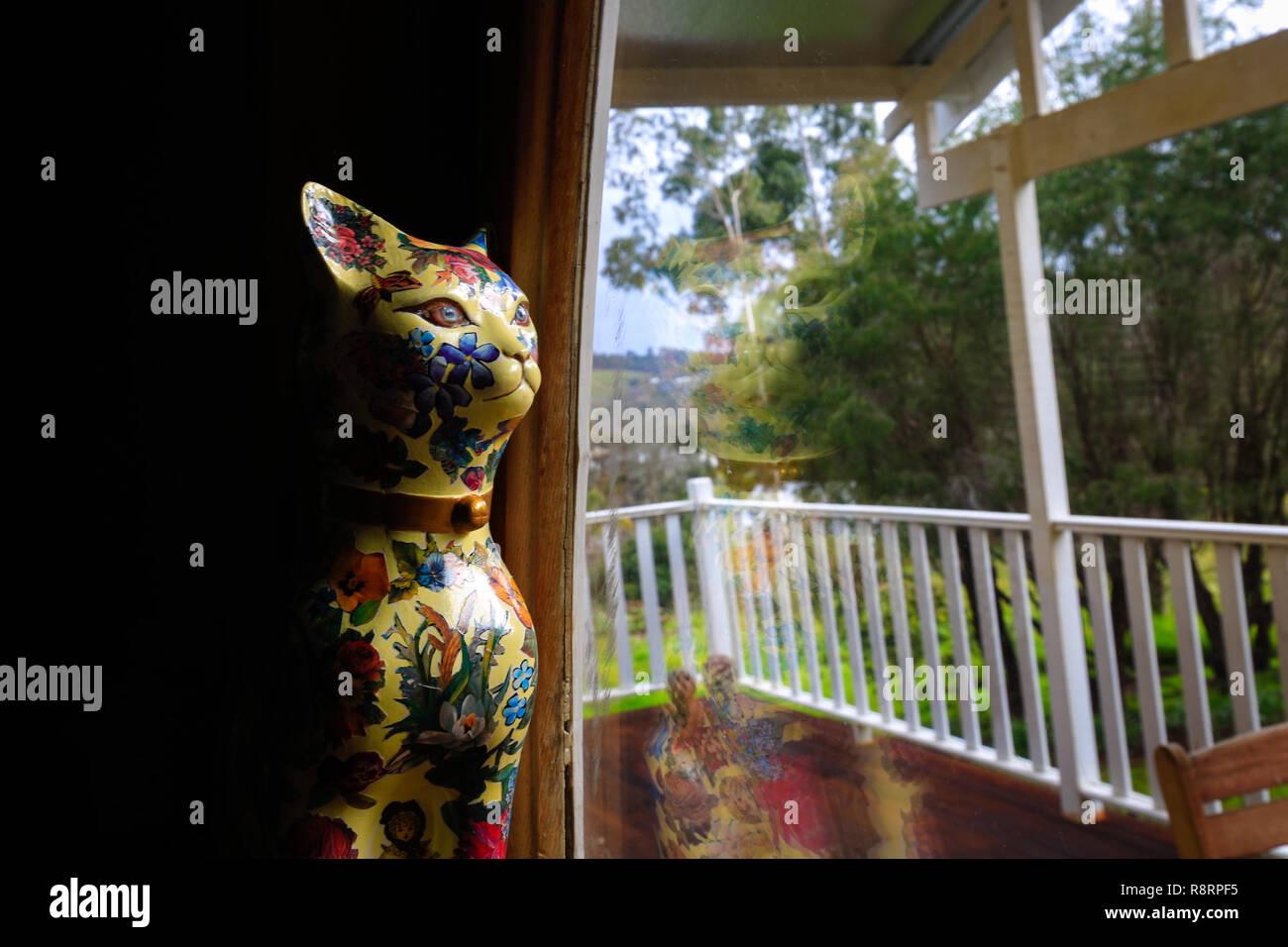 Cat nella finestra Immagini Stock