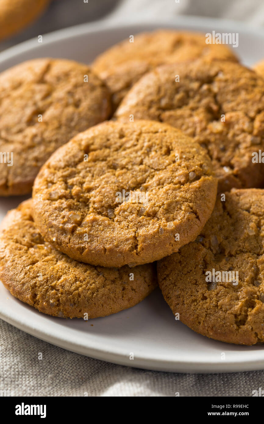 In casa Ginger Snap Cookies pronto a mangiare Immagini Stock