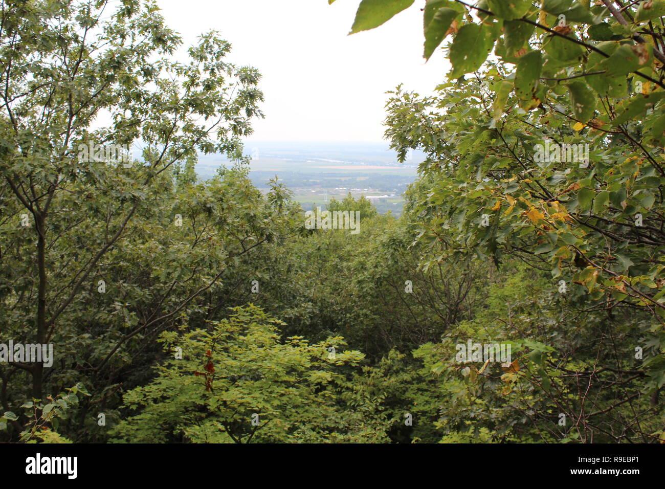 Questa foto è stata scattata in cima del monte Saint-Hilaire in Quebec, Canada in estate. Siamo in grado di vedere i campi che si trovano a nord. Immagini Stock