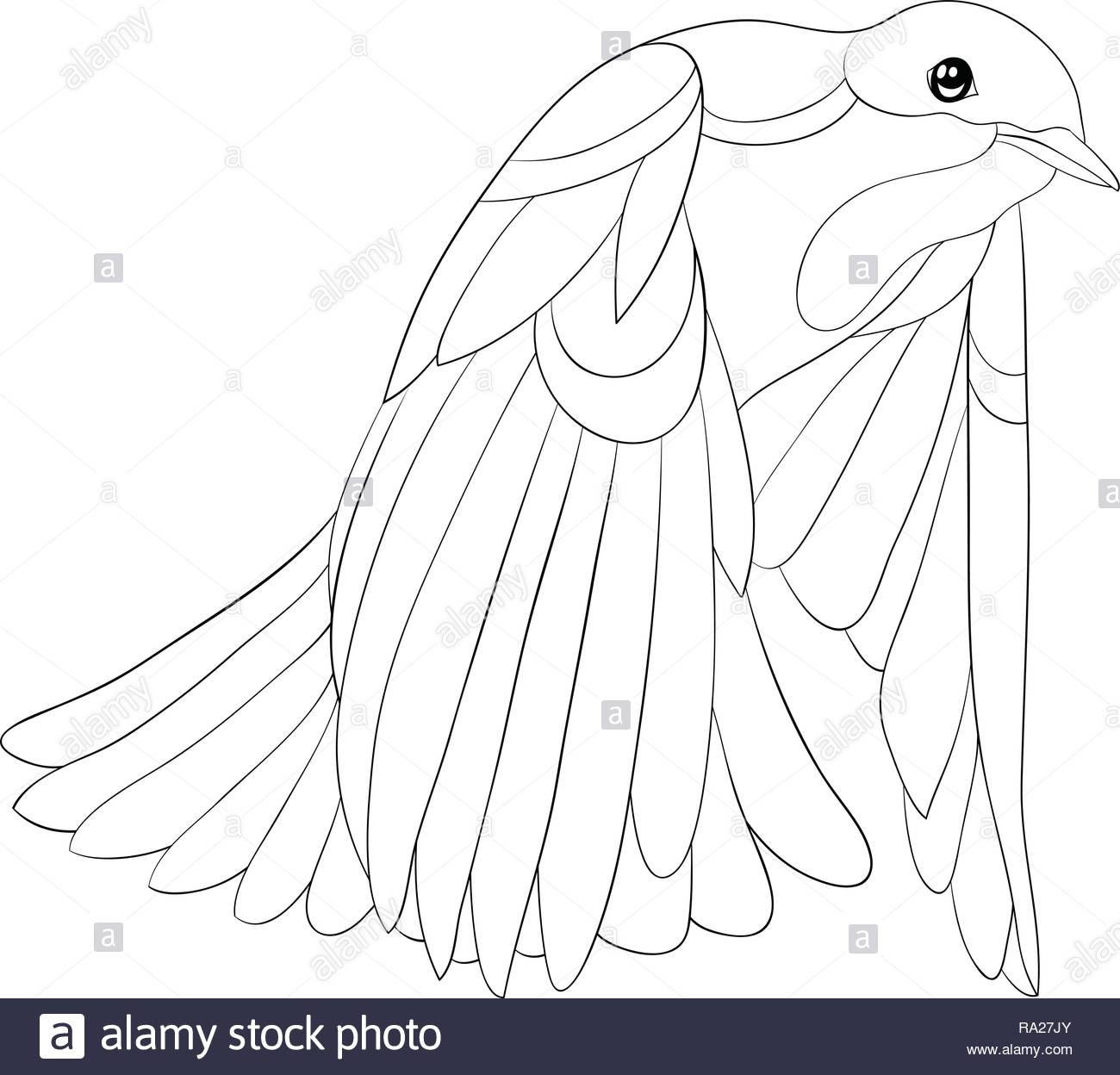 Dove Flying Print Immagini Dove Flying Print Fotos Stock Alamy