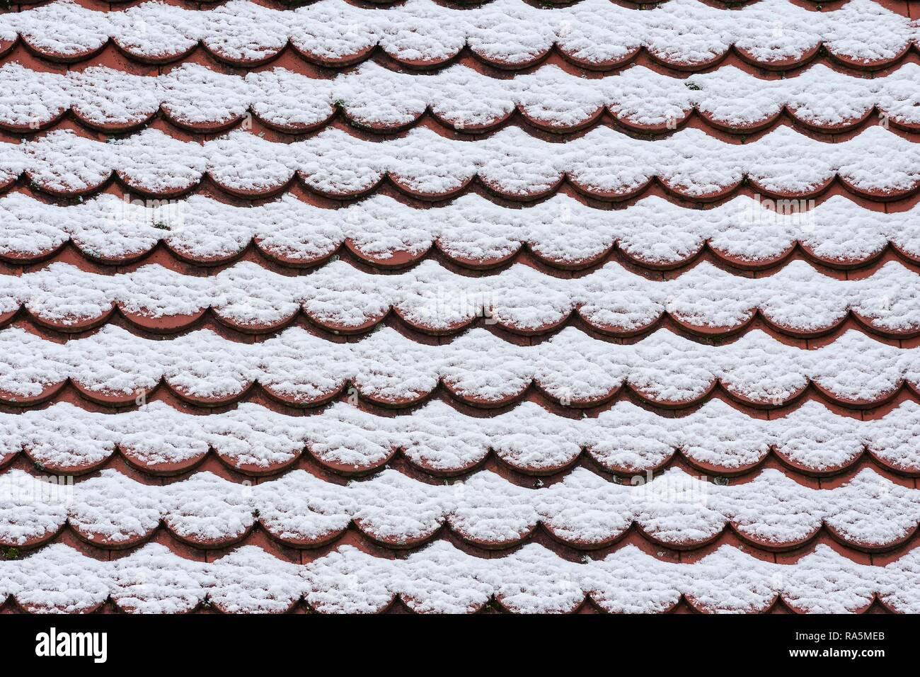 Coperte di neve tegole del tetto, pianura piastrella, Monaco di Baviera, Baviera, Baviera, Germania Immagini Stock
