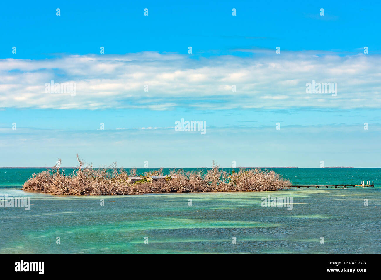 Poco denaro chiave, una piccola isola deserta circondate da bellissime crystal clear e acqua del mare turchese. Florida Keys. Immagini Stock