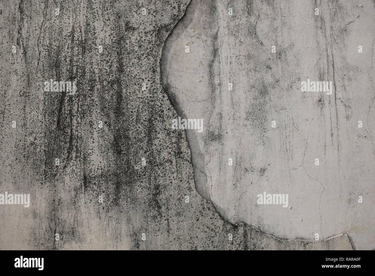 Pittura Effetto Intonaco Invecchiato bianco-grigio intonaco con delle macchie nere sulla parete