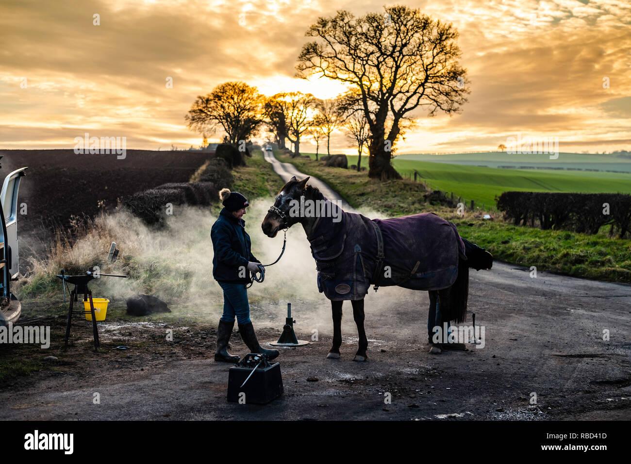 Morebattle, a Kelso, Scottish Borders, UK. 9 gennaio 2019. Gillian MacFadyen ha i suoi cavalli shoed da un maniscalco alla fine di una tranquilla giunzione a T vicino villaggio Morebattle in Scottish Borders. Credito: Chris Strickland / Alamy Live News Immagini Stock