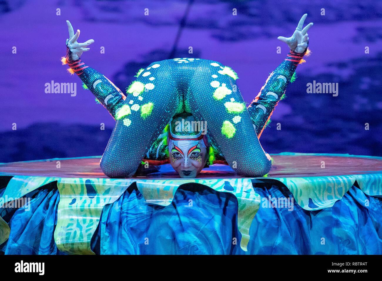 "Londra, Inghilterra. Xi Gennaio 201, membri del cast del Cirque Du Soleil eseguire in ""Cirque Du Soleil Totem' Prove abito presso la Royal Albert Hall ,l'Inghilterra, © Jason Richardson / Alamy Live News Immagini Stock"