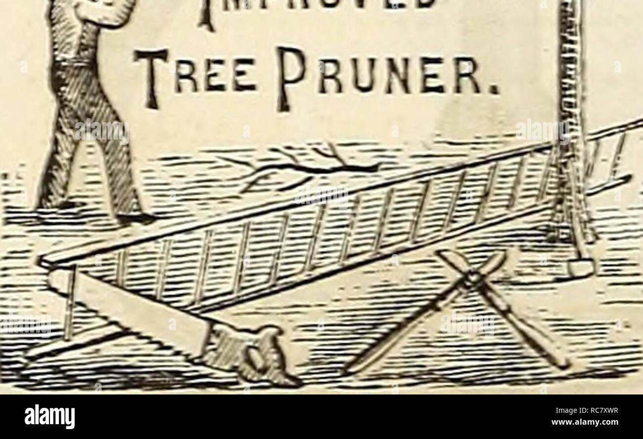 Calendario Potatura Alberi Da Frutto.Dreer S Garden Calendario 1876 Cataloghi Di Sementi