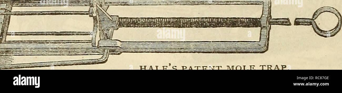 Calendario Potatura Alberi Da Frutto.Dreer S Garden Calendario 1883 Cataloghi Di Sementi