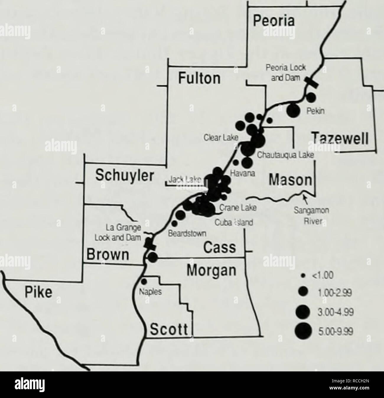""". Distribuzione e abbondanza delle popolazioni di inverno di aquile calve in Illinois. Aquila calva. Fig. 24.-numero medio ol b.iUl aquile ho censimento sono,è uilliiii inferiore llie Illinois Ri' • 100-299 % 3.00-4-99 innied per inenior una regione er. 1972-1986. Fig. 22.-Fastern sh, in Senacliw'ine L.tk la stima della densità di aquile calve nella parte inferiore del fiume Illinois regione media ().5(i al fiume miglio o 0,49 per squaie miglio di habitat delle paludi. La densità media per scjuare miglio delle zone umide (0,49) in questo re- gione slighth era superiore al valore lor la (""""entral e l'pj)ei Illinois River regioni (0.47) Foto Stock"""