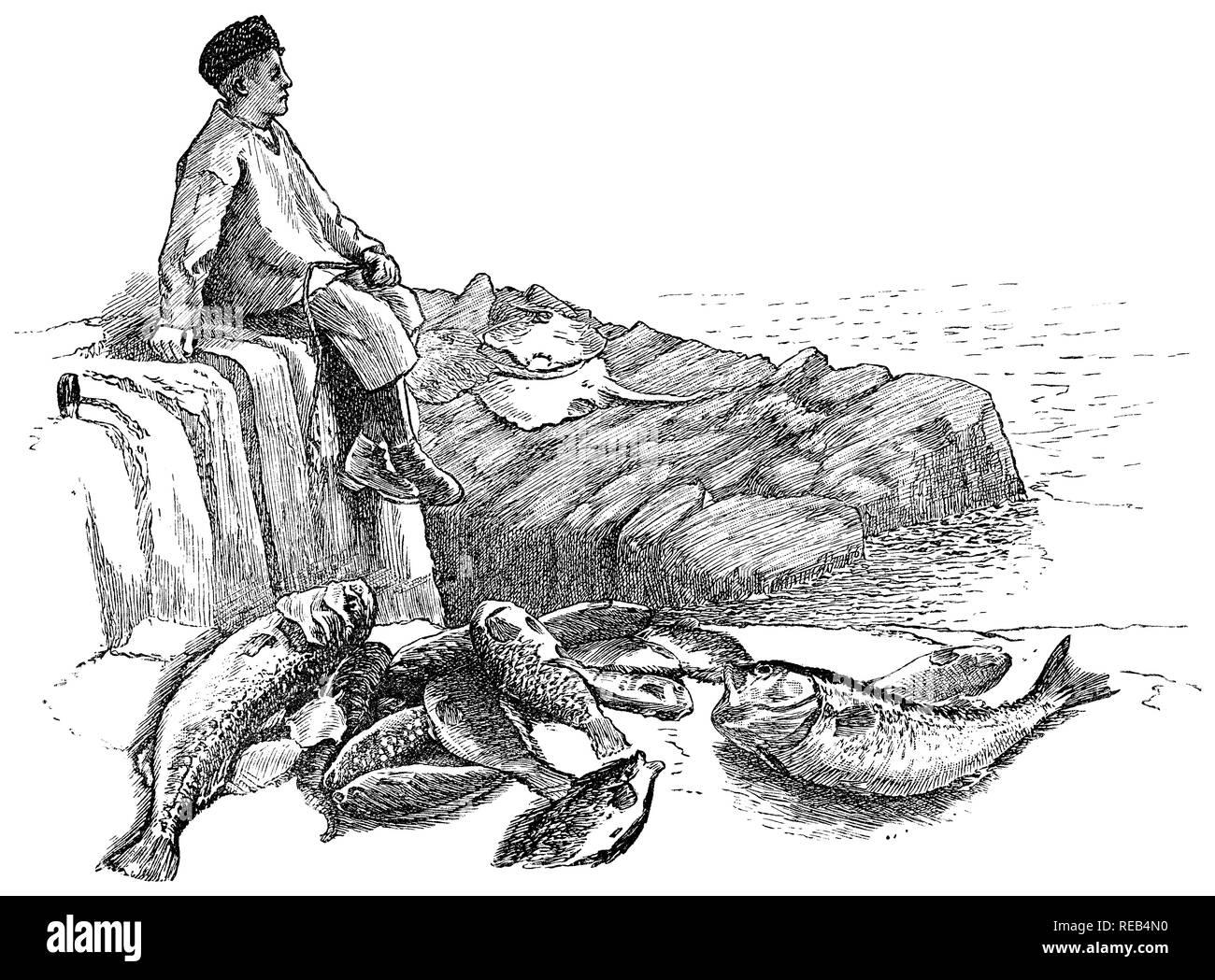 1884 incisione di un pescatore della Cornovaglia e alcune delle sue catture. Immagini Stock
