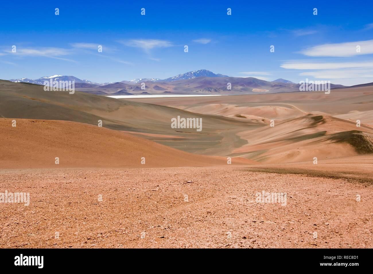 Laguna Brava, Reserva Provincial Las Vicuñas, alta delle Ande, La Rioja Provincia, Argentina Foto Stock