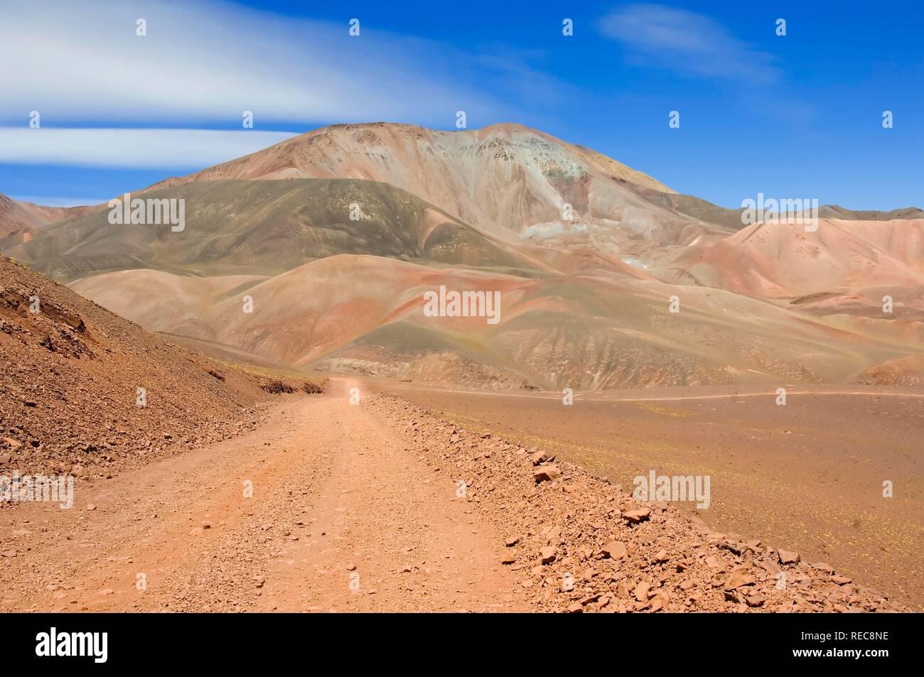 Reserva Provincial Las Vicuñas e Laguna Brava, alta delle Ande, La Rioja Provincia, Argentina Foto Stock