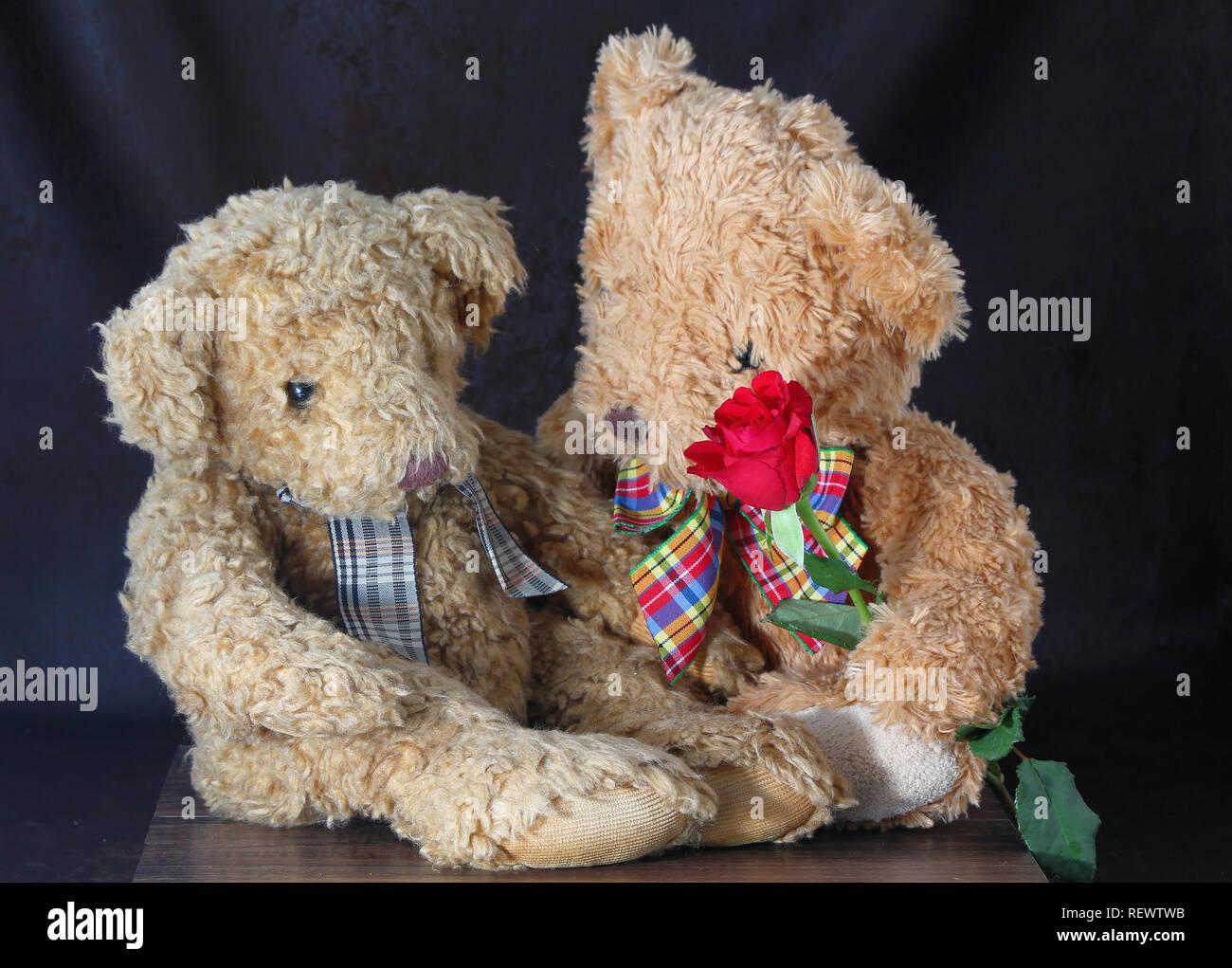 Anniversario Matrimonio Auguri Romantici : Simpatici orsetti giovane con una rosa rossa. buon san valentino