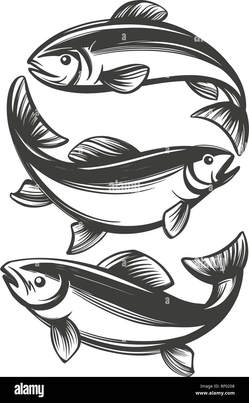 Pesce Icona Set Pesca Simbolo Disegnati A Mano Illustrazione