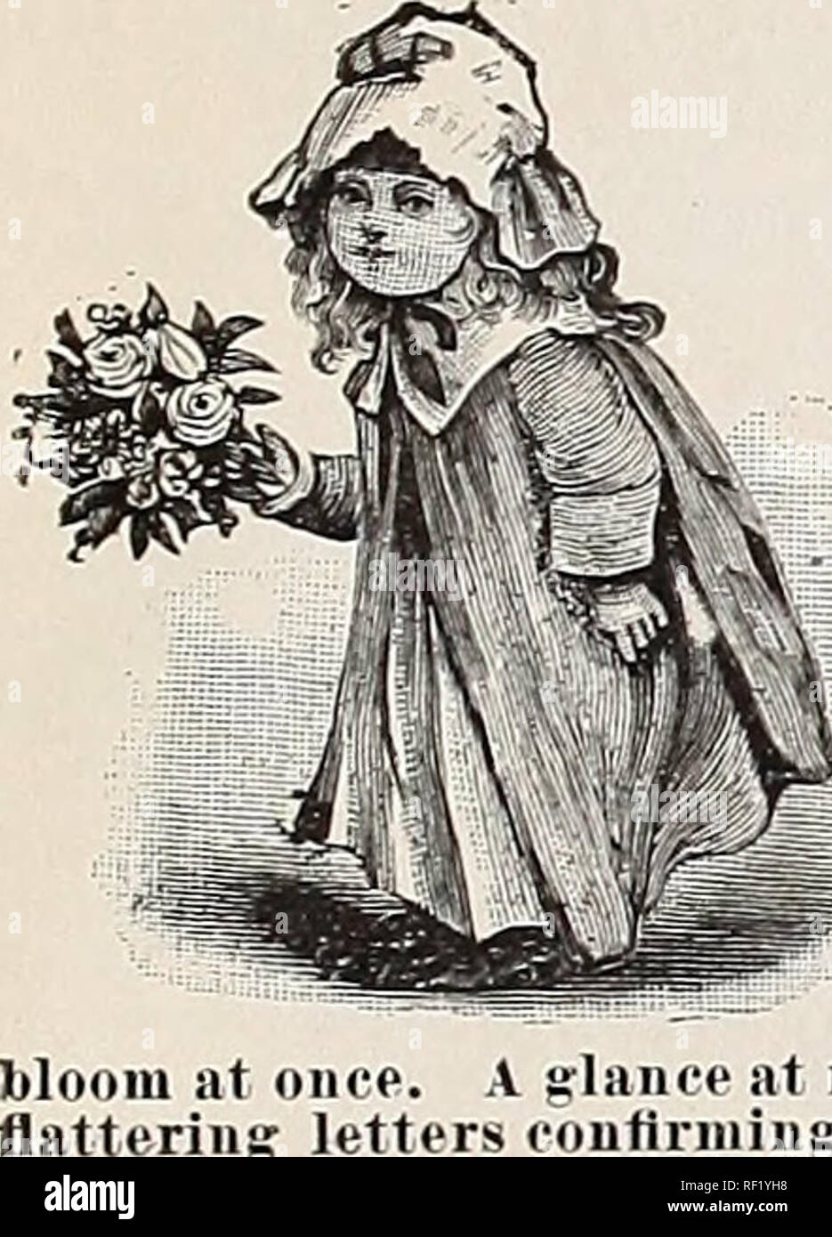 Mazzo Di Fiori Sinonimo.Catalogo Di Cottage Giardino Di Rose 1889 Vivaio Ohio Cataloghi