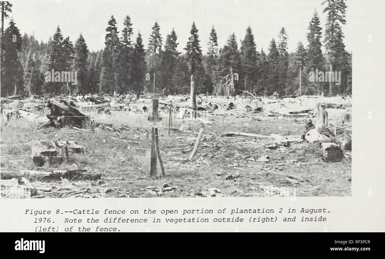 Velocità datazione Ashland Oregon