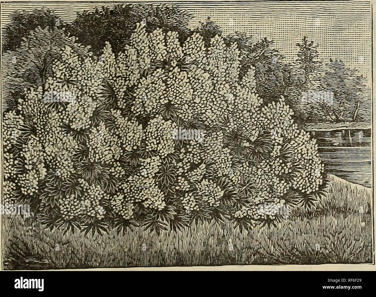 Beilaufgarn Deco Lang Yarns 150m// 6gr Fb 68 brüniert NEUE