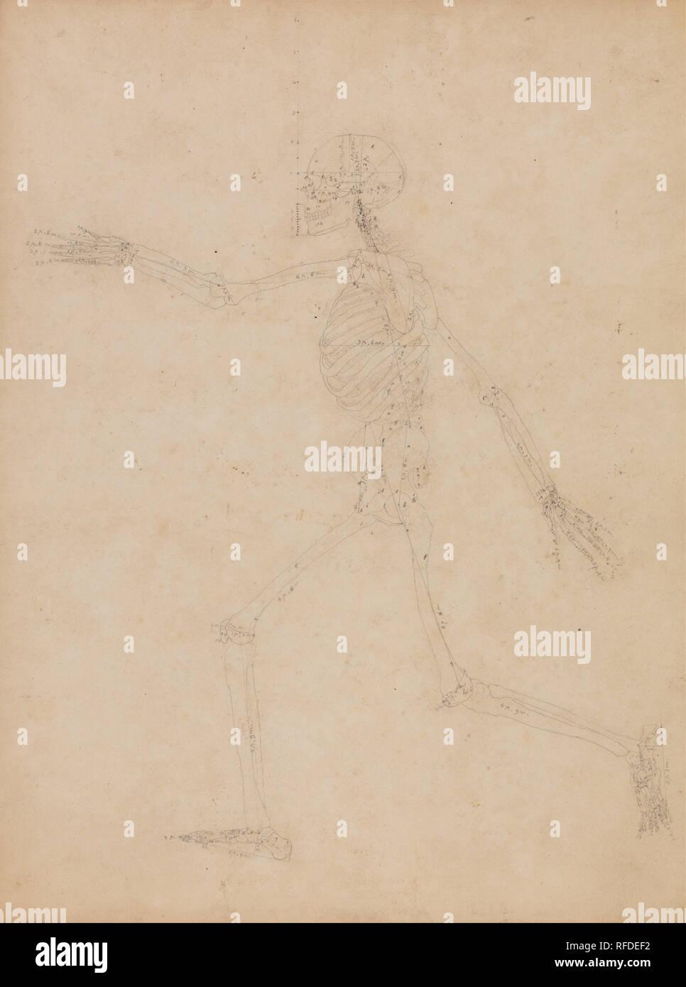 Un confronto esposizione anatomica della struttura del corpo umano con quello di una tigre e un comune Fowl: scheletro umano, vista laterale. Data/Periodo: 1795 a 1806. Disegno. Grafite su spessa, leggermente strutturata, beige carta intessuta; punte di spillo in corrispondenza di punti di riferimento nei pressi di testa. Altezza: 543 mm (21.37 in); larghezza: 406 mm (15.98 in). Autore: George Stubbs. Immagini Stock