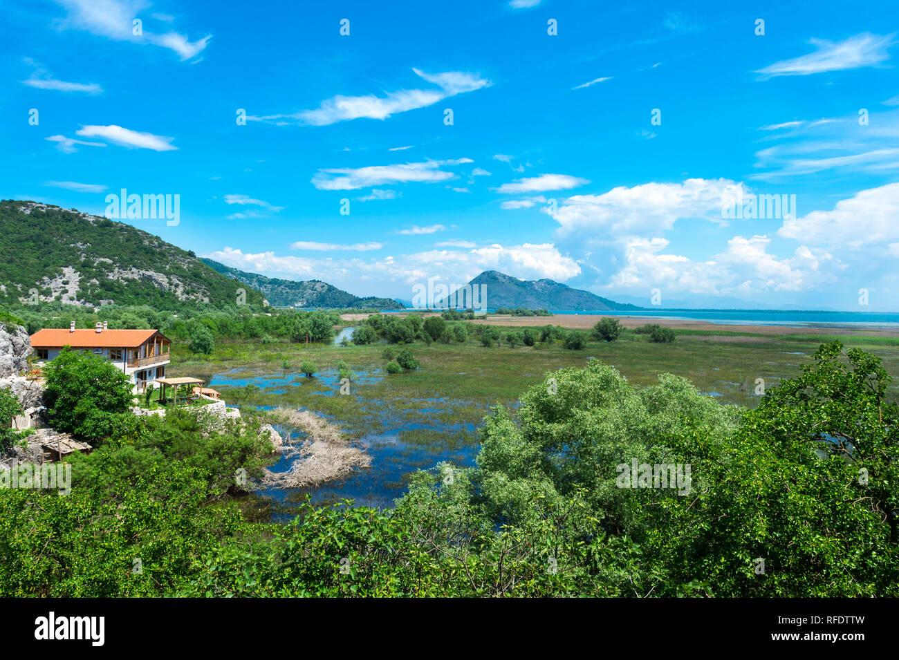 Skandar lago e campo allagato, Virpazar, Montenegro Immagini Stock
