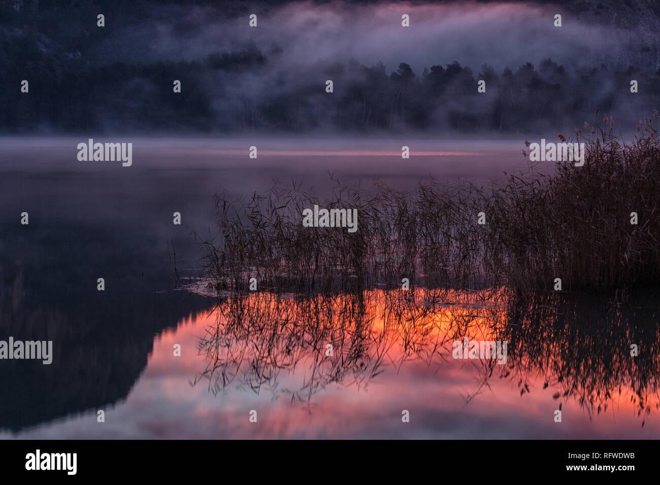 L'inverno è facile capt in questa palude a ovest di Catalogna Comunità autonoma denominata Montgai. Immagini Stock