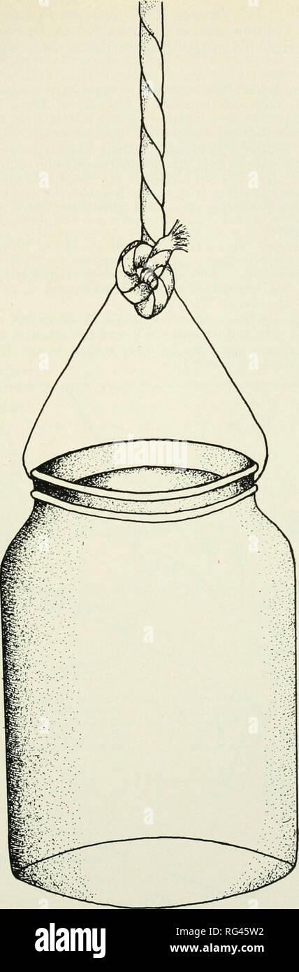 datazione bottiglie di coke di vetro