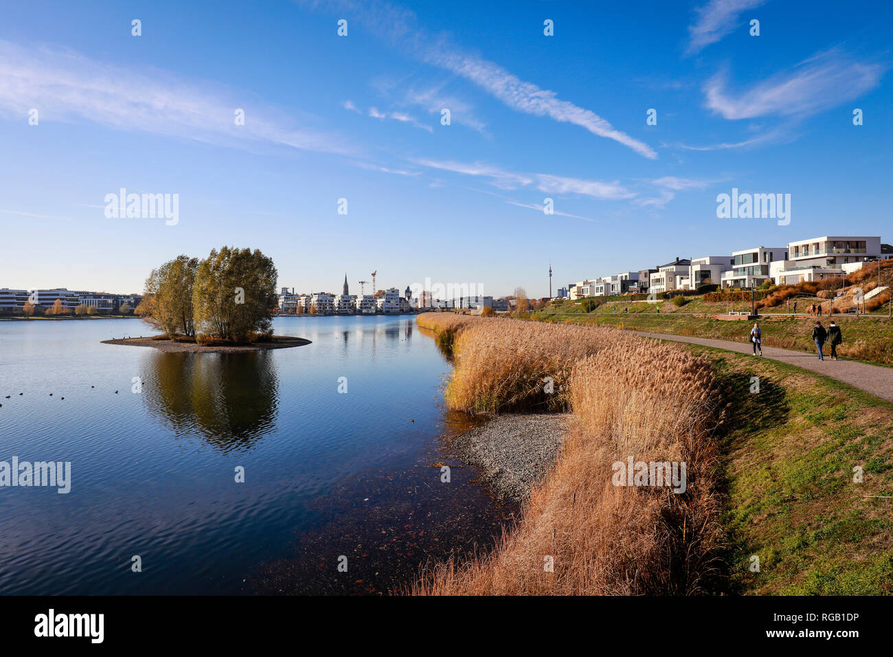 15.11.2018, Dortmund, Renania settentrionale-Vestfalia, Ruhrgebiet, Deutschland - Phoenix-See, der Phoenix-See ist ein kuenstlich angelegter vedere auf dem ehemaligen Foto Stock