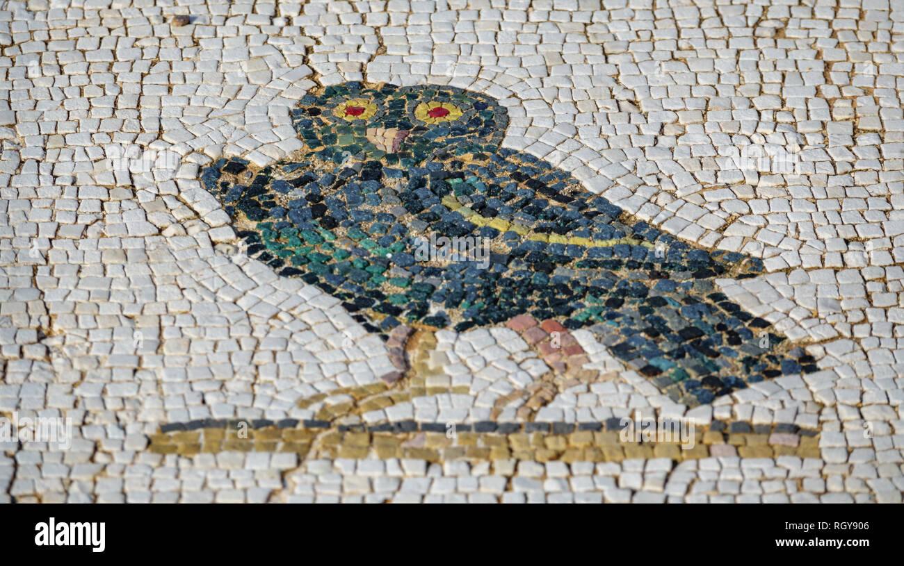 Mosaico romano piano con il gufo e la profondità di campo foto