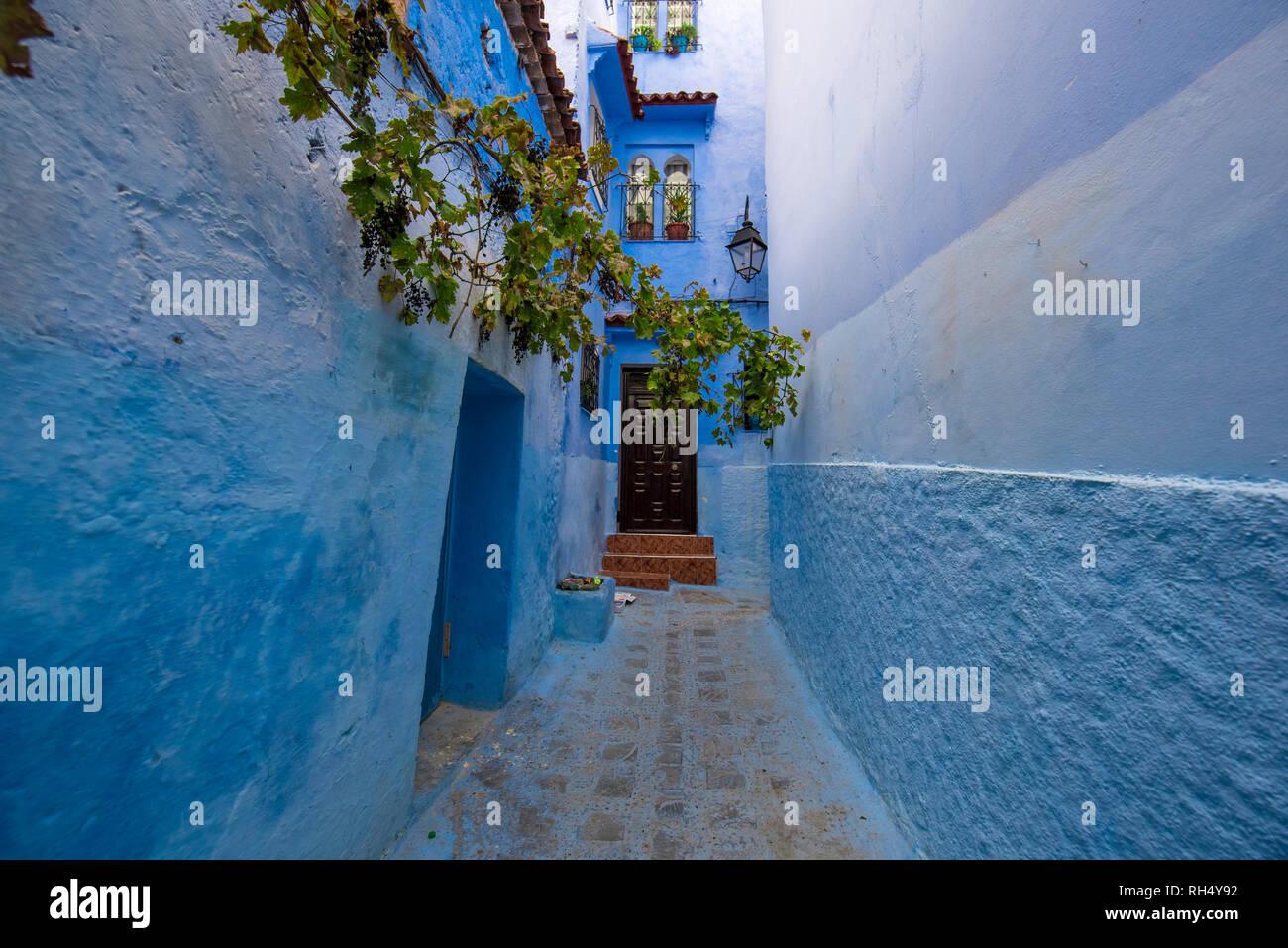 Case Blu Marocco : Bellissima vista della città blu chefchaouen marocco nella medina