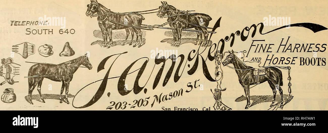 """. Allevatore e sportivo. I cavalli. 16 ©egli gvee&ev anb gpp<r""""amctw [27 agosto 1904. San Francisco, Cal. * 0^®5* ##########^^""""##### * * W^ PERCHÉ U. M. C. popolarità produrre perfetto per piacere? Perché U. M. C. munizioni persistentemente SPENNA UN PLENTITUDE DI PREMI. Ogni incontro dimostra la qualità superiori di queste munizioni. E pluribus unum: Vallejo, Cal., luglio 24, 1904-33 fuori di 37 utilizzato U. M. C, vincendo la prima e la seconda media elevata e le rigature altrimenti. Non si ritiene di aver avuto meglio gettare Iaferior Marchi e utilizzare U. M. C? Unione cartuccia metallica CO. 86-88 prima strada E. E. DRAKE Immagini Stock"""