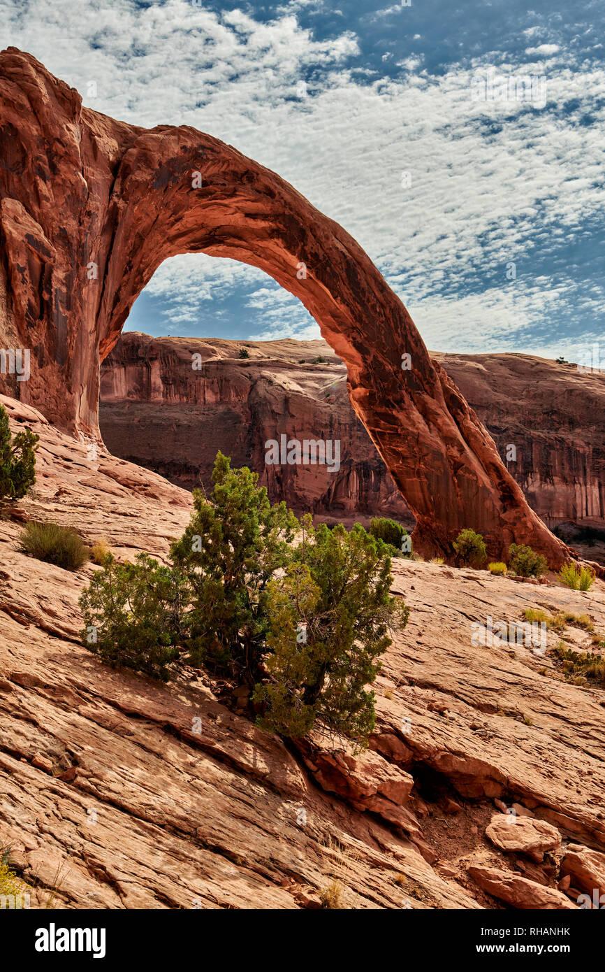 Arco di Corona, Moab, Utah, Stati Uniti d'America, Nord America arco di corona, Moab, Utah, USA, Nordamerika Immagini Stock