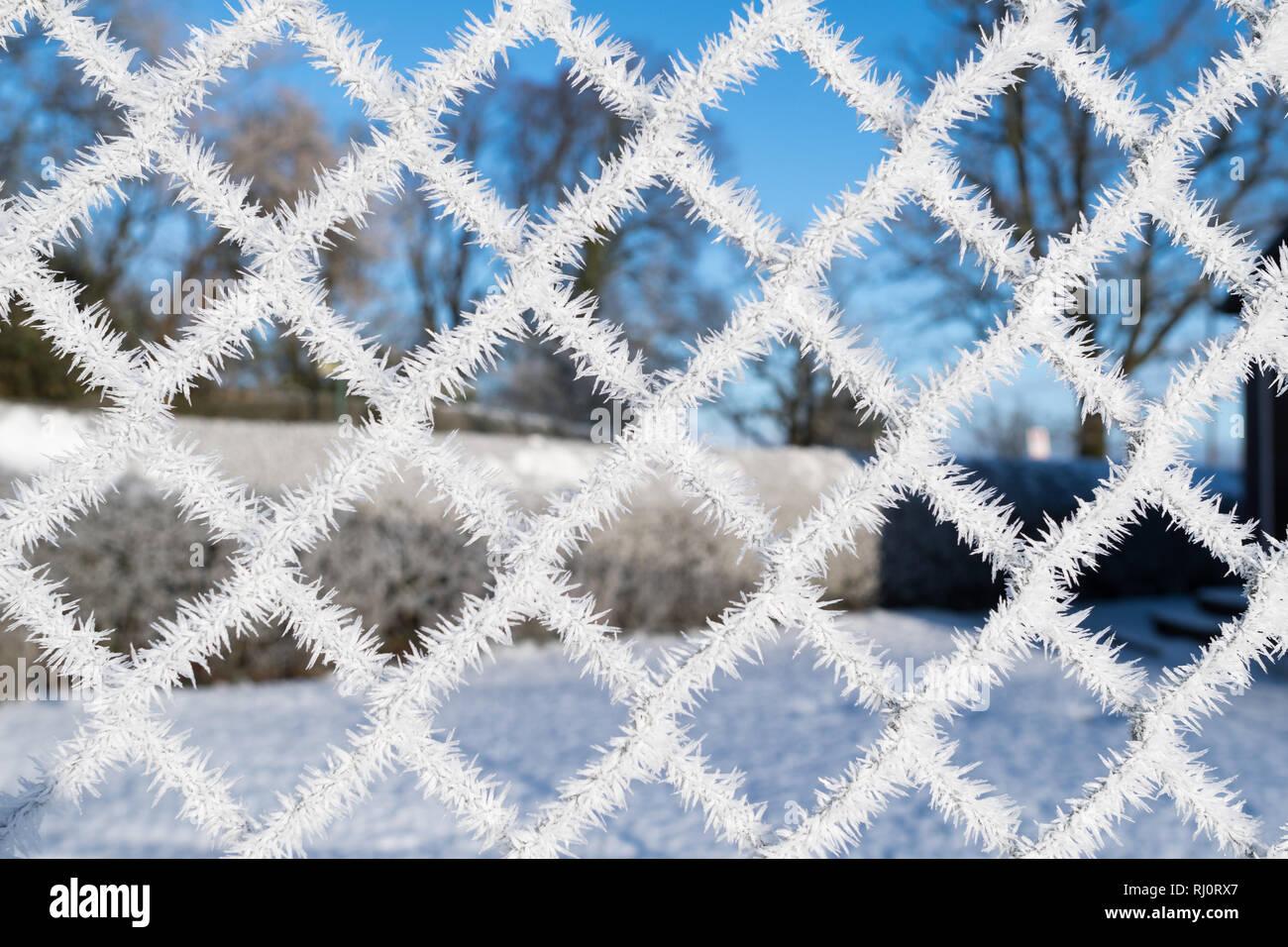 I cristalli di ghiaccio sul campo da tennis scherma Immagini Stock