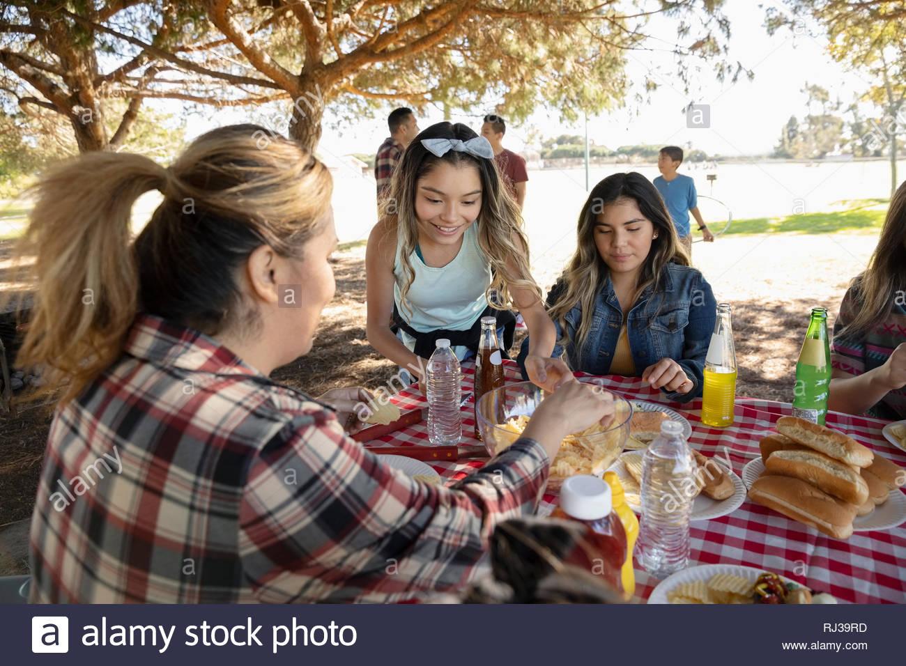 Famiglia Latinx godendo di pranzo a barbecue nel parco Immagini Stock