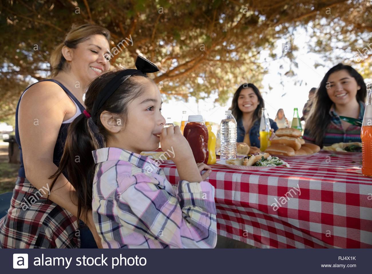 Famiglia godendo pranzo picnic nel parco Immagini Stock