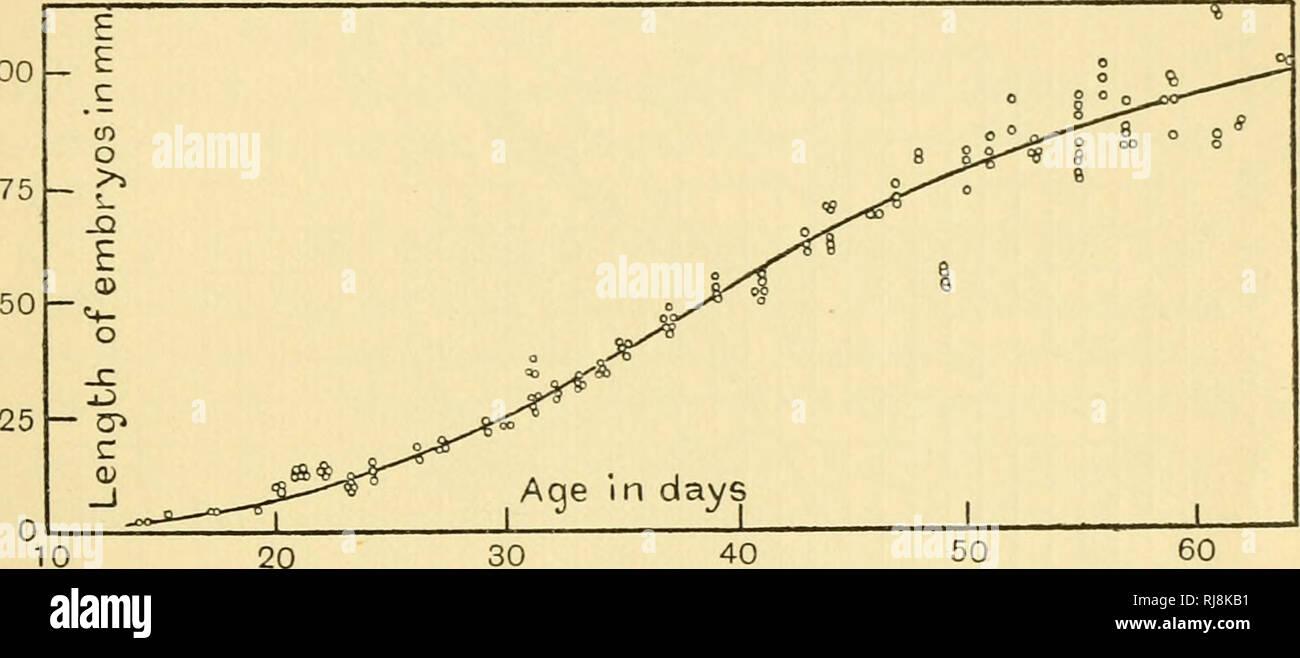Velocità datazione 40 ans più