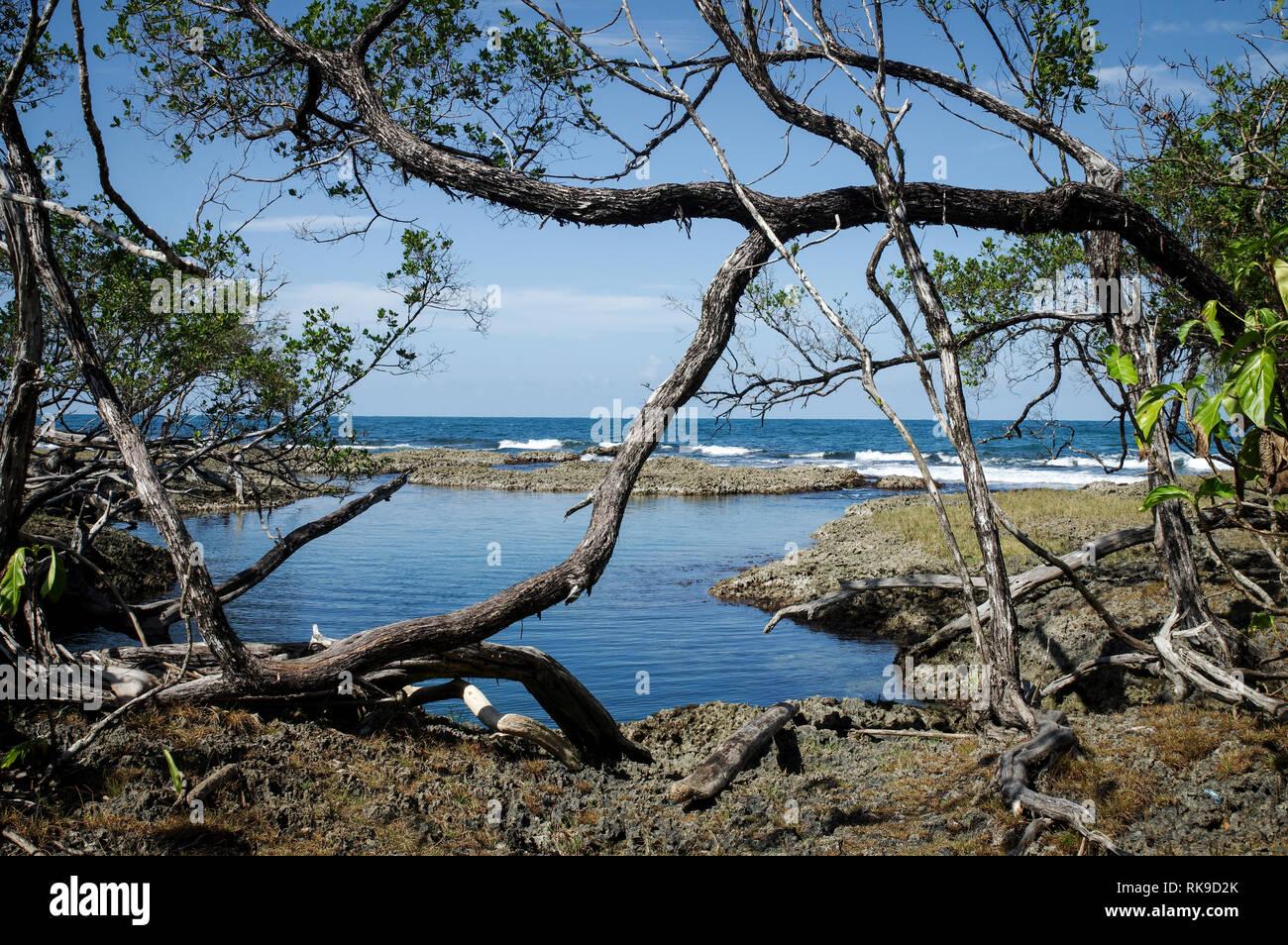 Laguna Blu su Isla Colon - Bocas Del Toro arcipelago, Panama Foto Stock