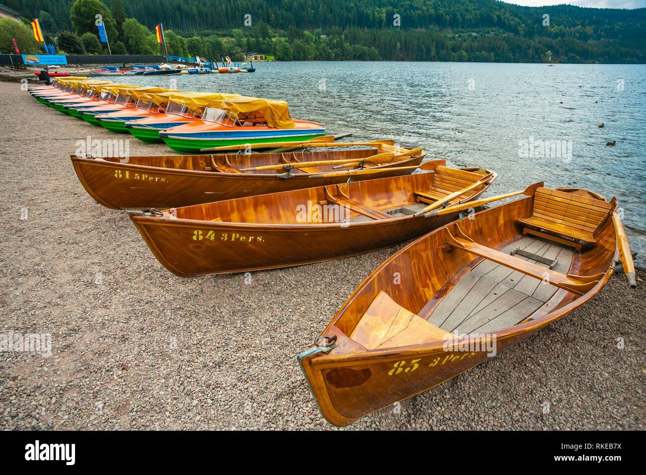 Barche a remi.lago Titisee. Titisee. Titisee-Neustadt. Foresta Nera. Baden Wurttemberg. Germania. Europa Immagini Stock