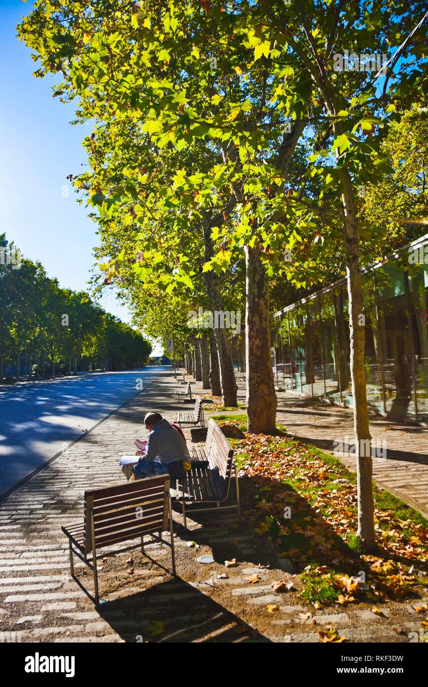 Campo Grande parco urbano, Valladolid, Castilla y Leon, Spagna Immagini Stock