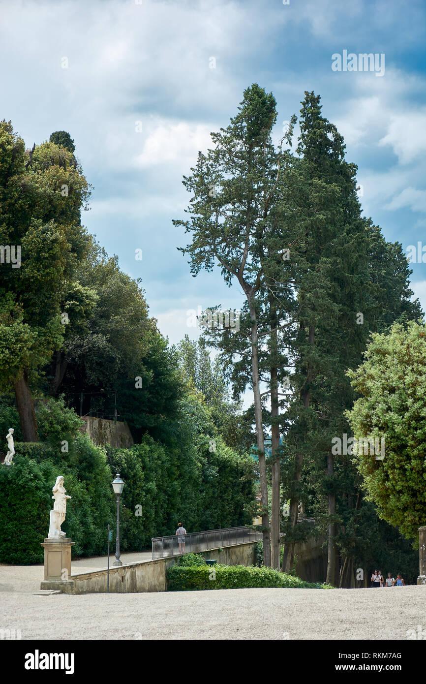 Grandi Alberi Da Giardini la gente che camminava sul giardino di boboli di firenze