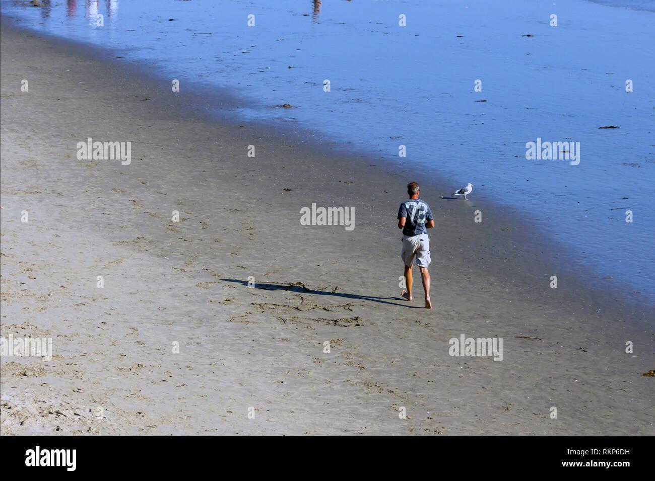 Hombre ejercitandose en la playa, Santa Monica, California Immagini Stock