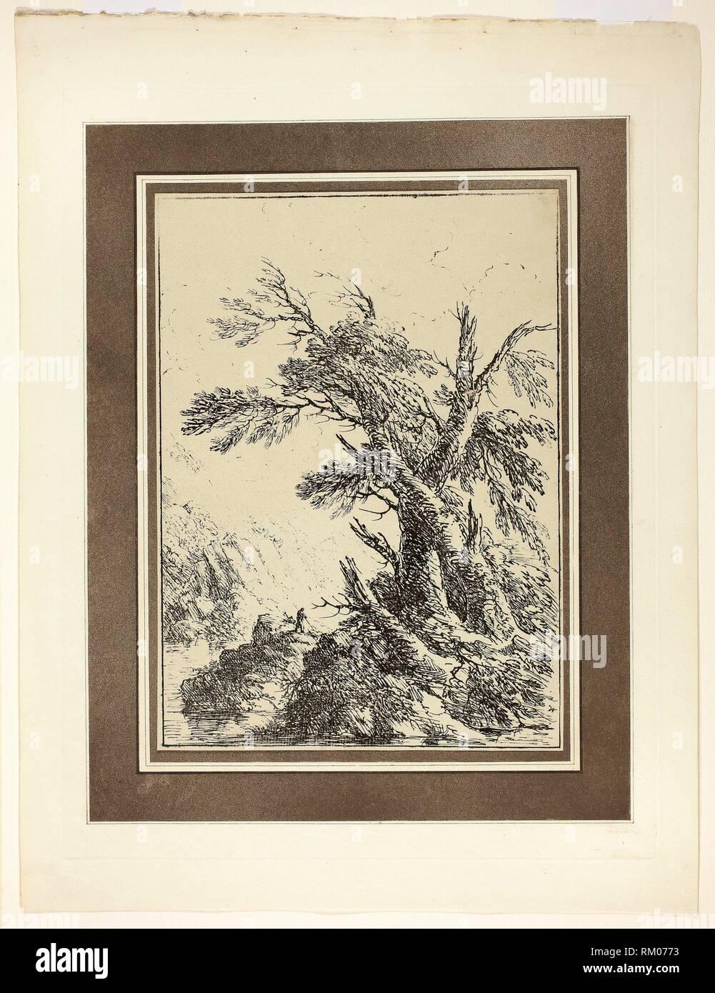 22f2b53d0a Paesaggio con alberi secolari e da acqua, dal primo numero di esemplari di  Polyautography -