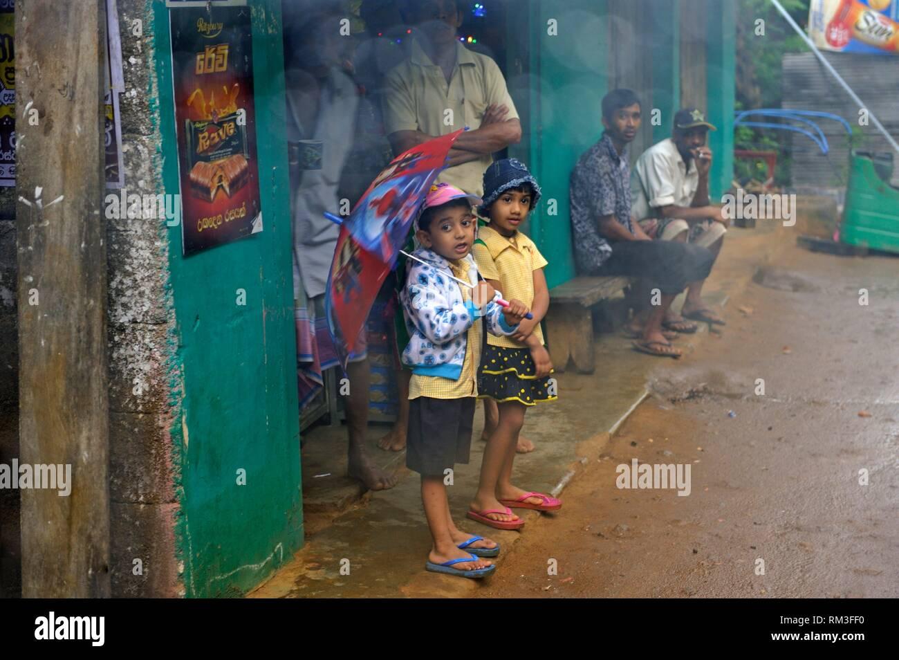 Lo Sri Lanka, il subcontinente indiano, Asia del Sud. Immagini Stock