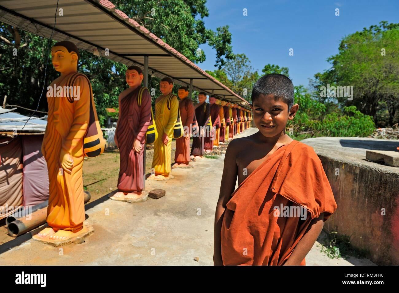 Giovane monaco novizio al monastero Buddista, Provincia del Sud, Sri Lanka, India, Asia del Sud. Immagini Stock