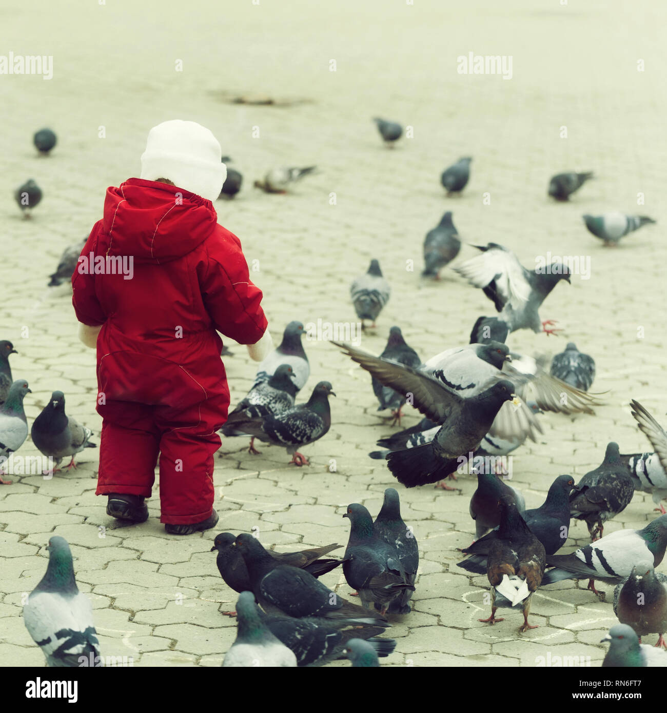Bambino a piedi in rosso caldo nel complesso con piccioni Foto Stock