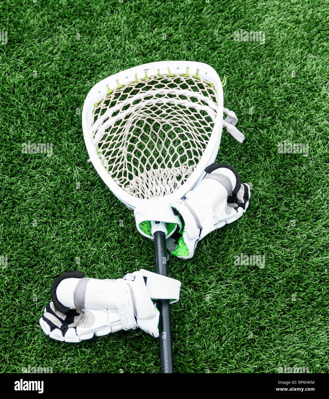 Un bianco lacrosse goalie stick è sdraiato su un tappeto erboso verde campo con i guanti bianchi attaccato. Immagini Stock
