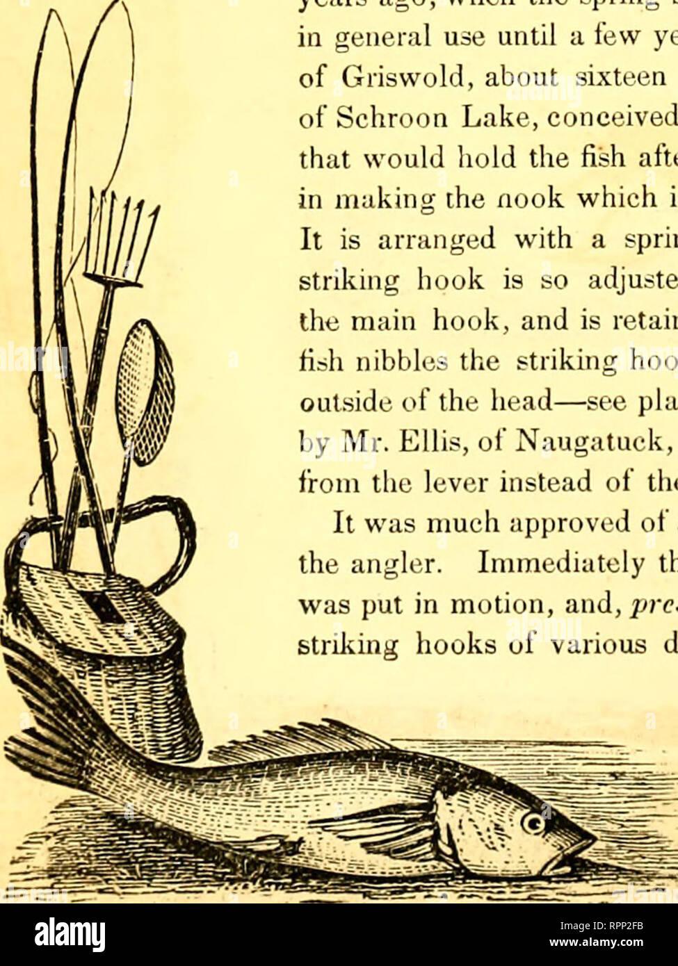 """. American Angler's guide : o, completo di fisher, manuale per gli Stati Uniti: contenente i pareri e le pratiche dei pescatori esperti di entrambi gli emisferi ; con l'aggiunta di una seconda parte.. La pesca. Capitolo XII. La molla ganci a scatto. """" Un debole invenzione del nemico."""" Perché l umile e mite piscator dovrebbe essere chiamato il nemico della gara finny, o perché i pescatori, nel parlare del loro exploit, deve chiamare i loro amici finny i loro nemici, è un mistero ancora di essere spiegato. Tale non può certamente perseguire il loro sport con un vero spirito Waltonian ; per il padre di pescatori mai u Foto Stock"""