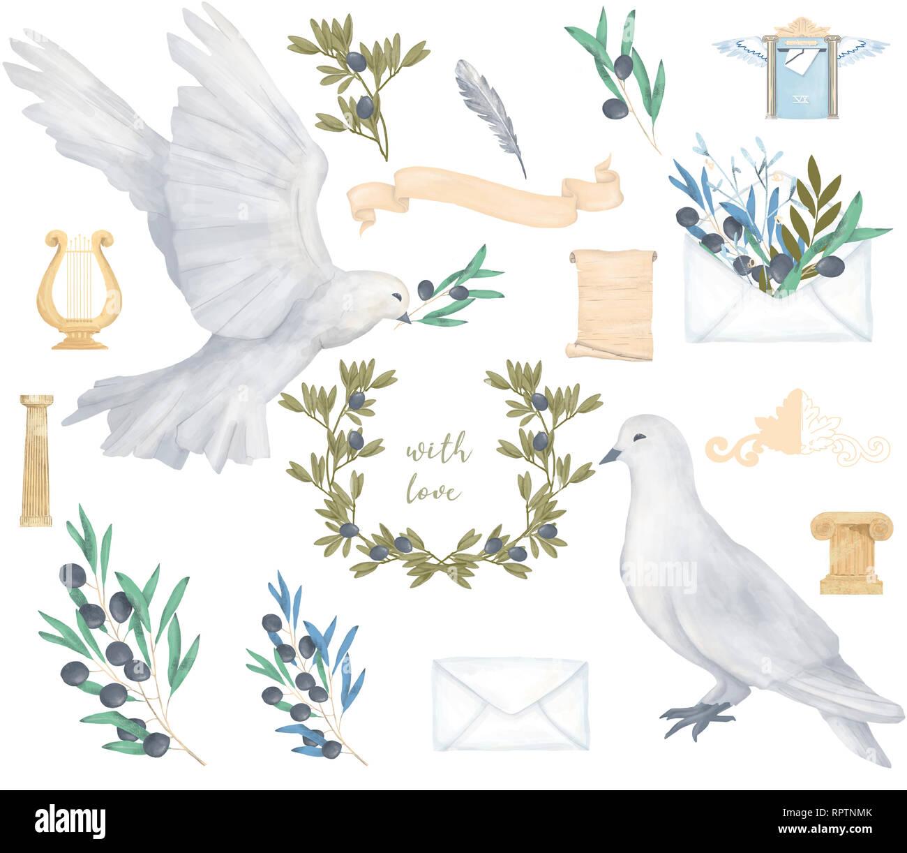 Pigeon E Oliva Clip Art Disegno Digitale Acquerello Uccello