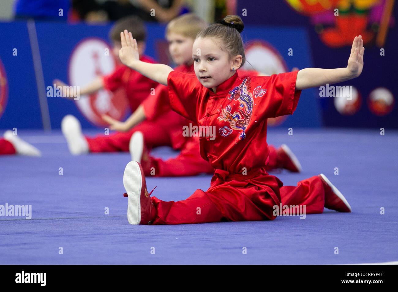 Mosca, Russia. Il 23 febbraio, 2019. I concorrenti di eseguire durante la cerimonia di apertura per la mosca Wushu stelle 2019 concorrenza a Mosca, in Russia, nel febbraio 23, 2019. Credito: Bai Xueqi/Xinhua/Alamy Live News Foto Stock