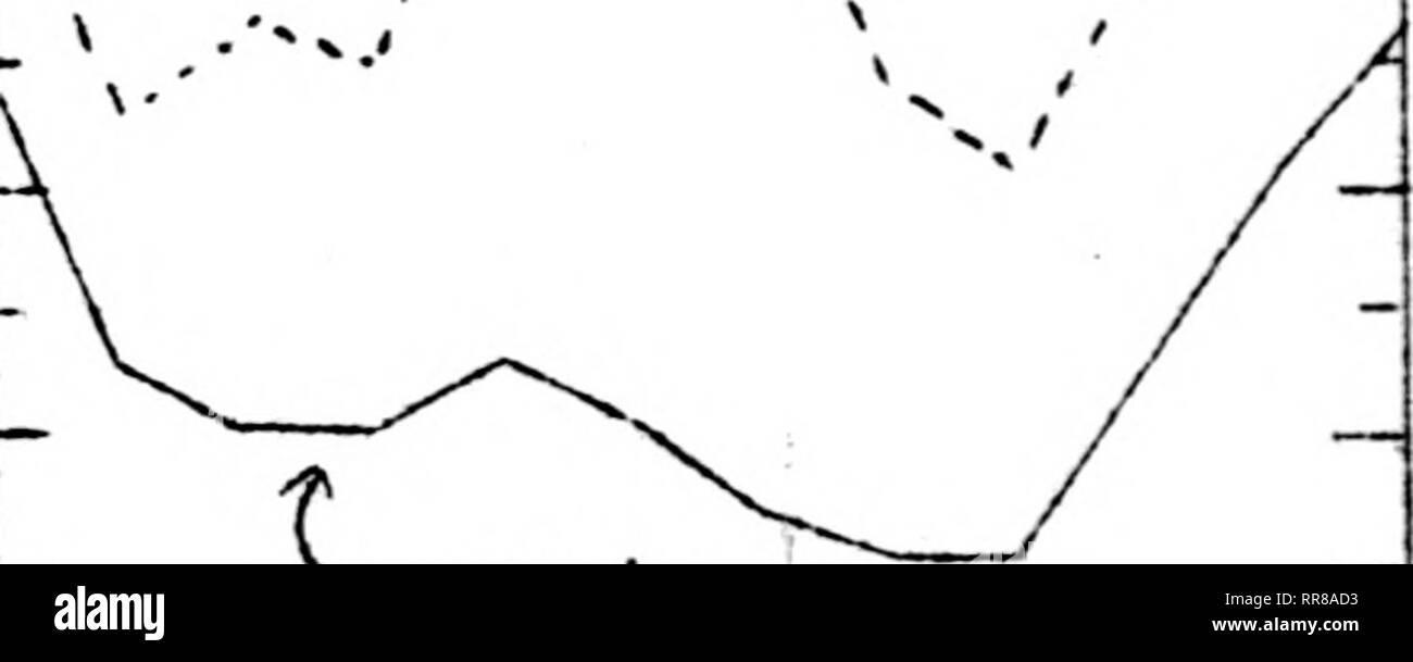""". Illinois degli agricoltori lettera di outlook [microformati]. Agricoltura -- Illinois; Agricoltura -- Aspetti economici Illinois. Stagionali normali^ basato su 19^2 Media ( 19i^3 J maiale Macellazione U.S. Ispezione federale, 1952-U1 Av. Milioni di euro e 19^5 a data, testa 7.0 6.0 5.0 k.o 3.0 2.0. t 1932-^1 Av. J. """"?: .-i. J"""". Kj J ; S 0 N D. Si prega di notare che queste immagini vengono estratte dalla pagina sottoposta a scansione di immagini che possono essere state migliorate digitalmente per la leggibilità - Colorazione e aspetto di queste illustrazioni potrebbero non perfettamente assomigliano al lavoro originale. Università dell'Illinois a Urbana-Champaign. Ex cooperativa Foto Stock"""