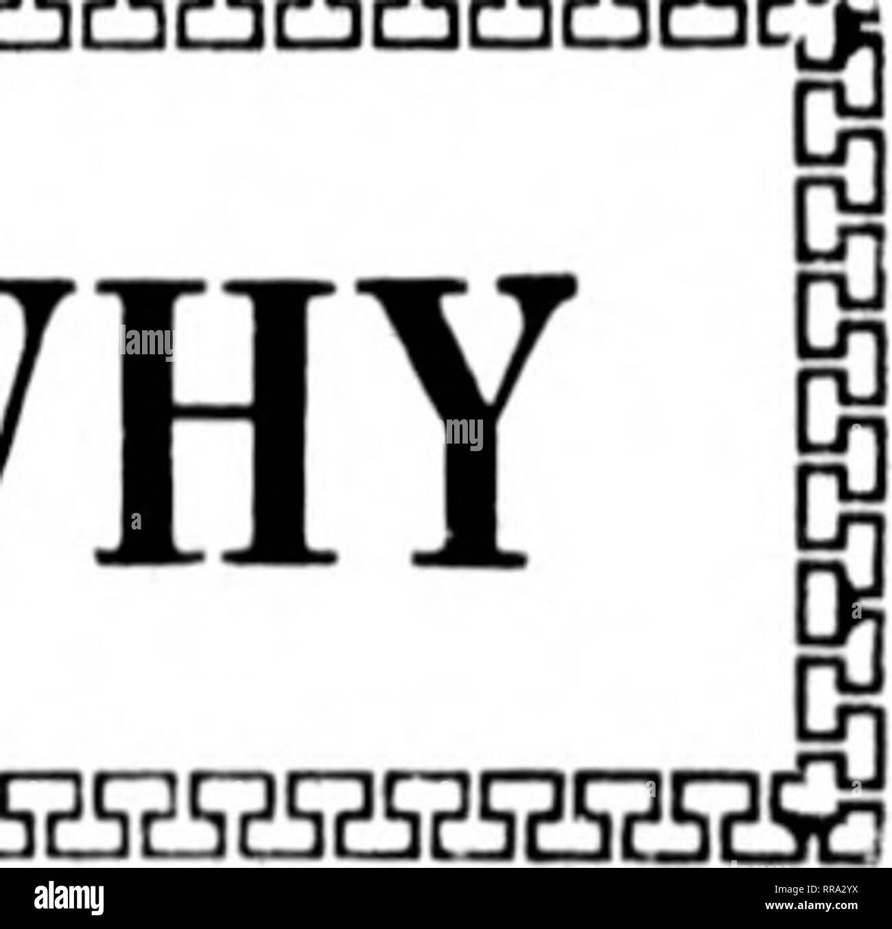 . Fioristi' review [microformati]. Floricoltura. IIKlKMIiKlt 7, I'.tlil: fioristi^ Rassegna liir 63 di cui sopra è stata in fase di stallo a throe piante in (Jhicayc) e vicinitv; vale a dire, la ran<(e di (ieor^e J. sfera, a Glen KIlyn, 111., e bas- sctt & Washhurn, Hinsdale, 111.; entro i limiti della città si può bo visto in opera- zione alla Carey mattone Co., sessanta- sesto street e Orand avenue. In ciascuna di tali impianti l'aria calda è hrouKht liefore il bruciatore ad olio jet- teste, e la combinazione di aria calda e di incendi dell'olio è portato da lì verso la camera di combustione principale. F. R. Gru, Jr. TR Immagini Stock
