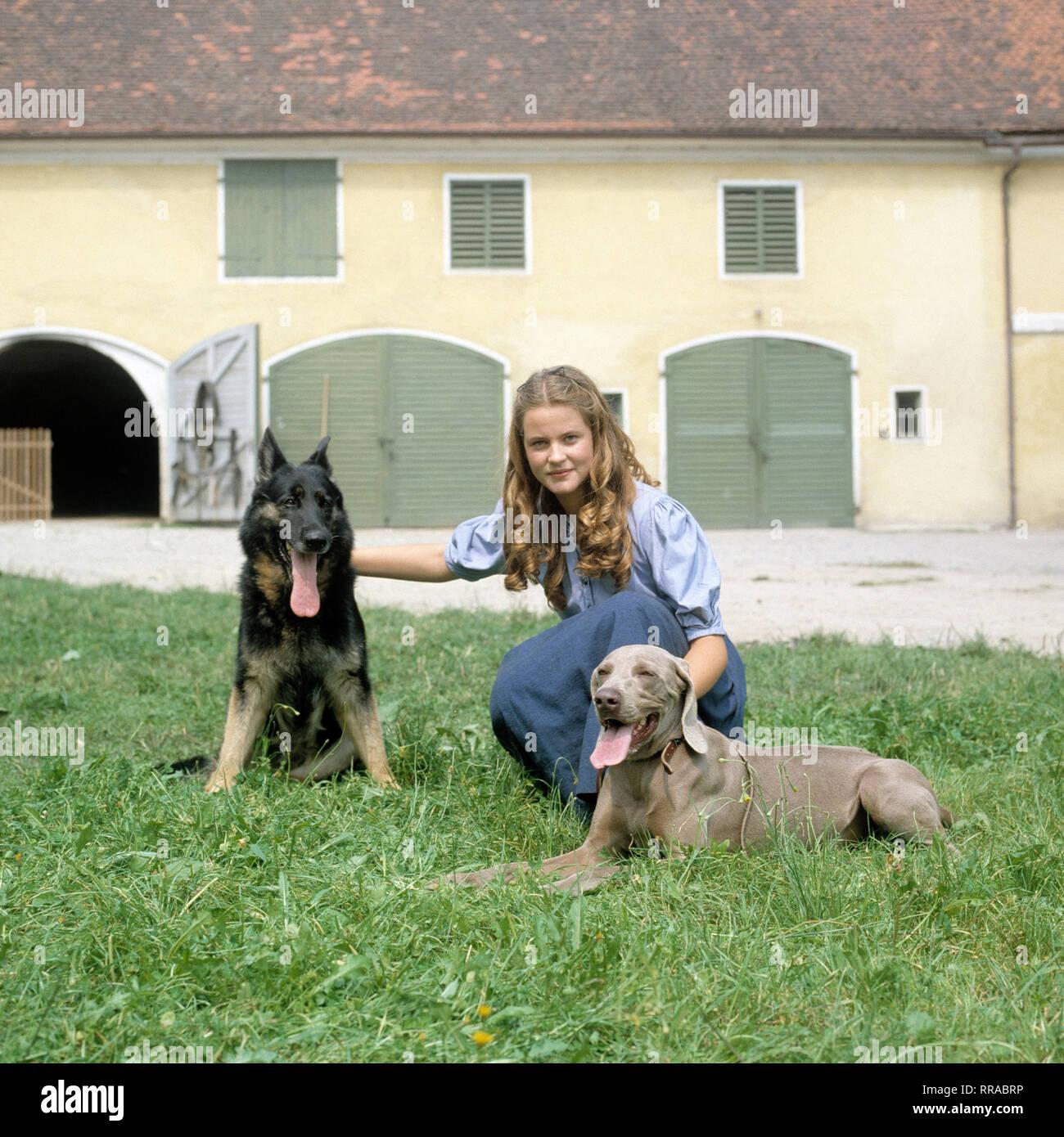 DER TROTZKOPF / Folge 1 - Abschied / BRD 1983 / Helmut Ashley / TV-Mehrteiler von 1983: ANJA SCHÜTE (Ilse) mit Hunden (Schäferhund und Weimeraner). EM / Schüte / Überschrift: DER TROTZKOPF / BRD 1983 Immagini Stock